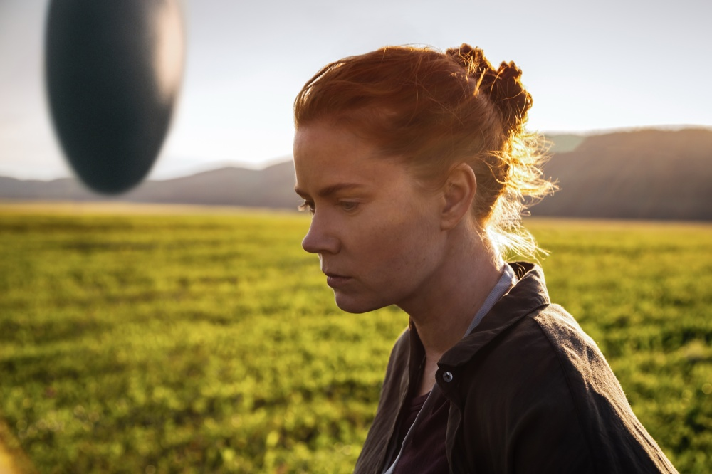 arrival_fotopelicula_11550